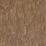 Cèdre des Bois